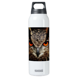 Eagle-Owl 16 Oz Insulated SIGG Thermos Water Bottle
