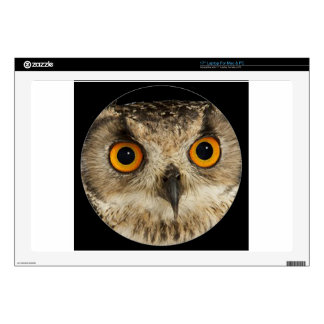 """""""Eagle Owl"""" Decal For 17"""" Laptop"""