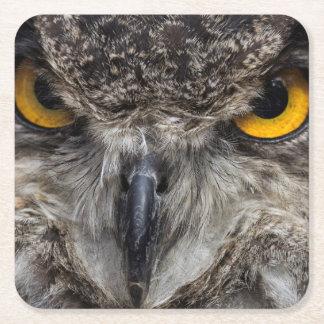 Eagle Owl Square Paper Coaster
