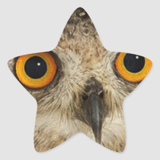 """""""Eagle Owl"""" Star Stickers"""