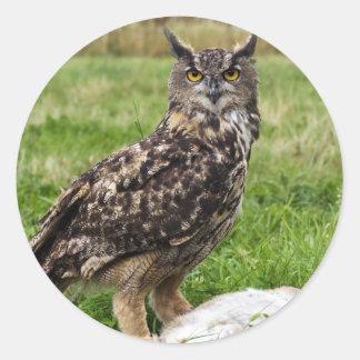 Eagle Owl Round Stickers