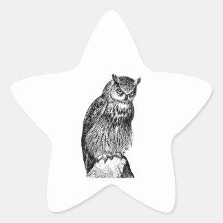 Eagle Owl Vintage Wood Engraving Sticker