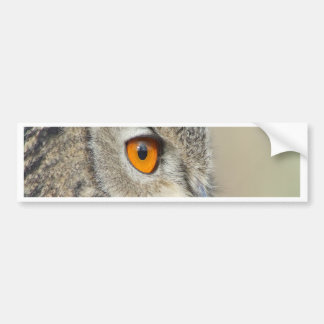 Eagle Owl waiting for love Bumper Sticker