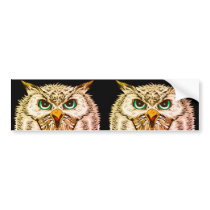 Eagle Owls Bumper Sticker