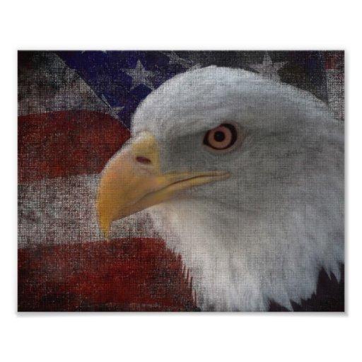 Eagle patriótico y bandera impresiones fotograficas