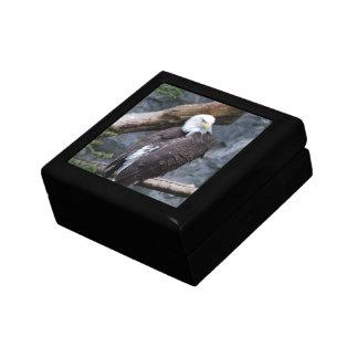 Eagle Perch Gift Box