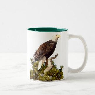 EAGLE  PERCHED ON PINE BOUGH Two-Tone COFFEE MUG