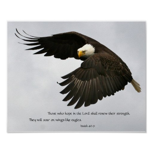 Eagle Photo with Bible Verse Poster