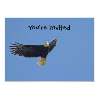 Eagle Picture Card