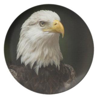 Eagle Party Plates