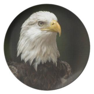 Eagle Plates