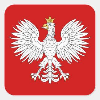 Eagle polaco pegatina cuadrada