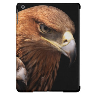 Eagle portrait isolated on black case for iPad air
