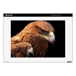 Eagle portrait isolated on black laptop skins