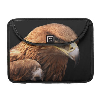 Eagle portrait isolated on black MacBook pro sleeve