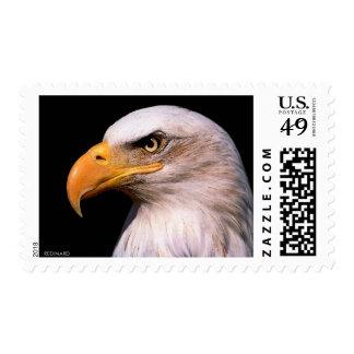 Eagle Postage