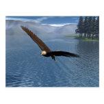 Eagle Postales