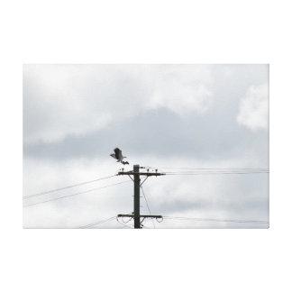 EAGLE QUE ASE SU PRESA Y UNA ELECTRICIDAD POSTE LONA ENVUELTA PARA GALERIAS