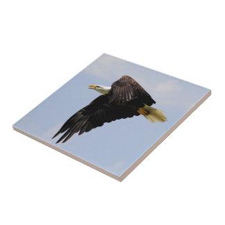 Eagle que vuela la baldosa cerámica tejas  cerámicas