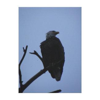 Eagle real impresión en lona