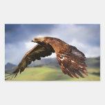 Eagle Rectangular Sticker