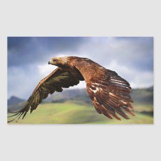 Eagle Rectangular Sticker