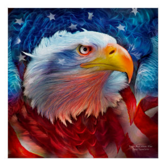 Eagle - Red White Blue Fine Art Poster/Print Poster