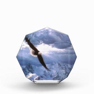 Eagle resiste a la tormenta