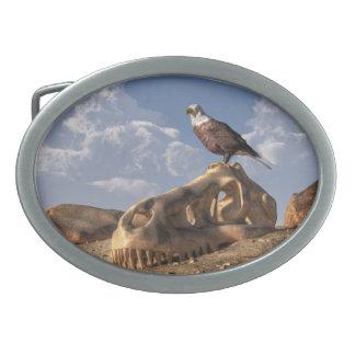Eagle Rex Oval Belt Buckles