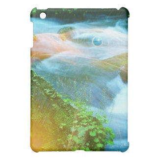 Eagle Rock iPad Mini Case
