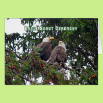 Eagle Scout Ceremony Invitation, Bald Eagles Card