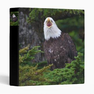 eagle screaming binders