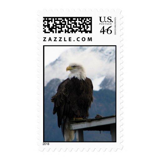 Eagle Franqueo