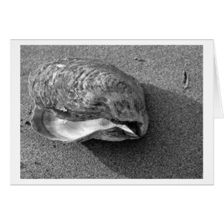 Eagle Shell (Black and White) Card
