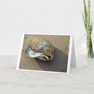 Eagle Shell (Color) Card