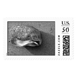 Eagle Shell Stamp (Black and White)