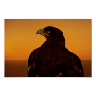 Eagle silhouette at sunset poster