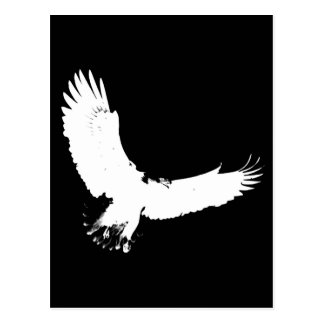 Eagle Silhouette Postcard