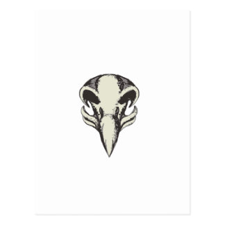 Eagle Skull Retro Postcard