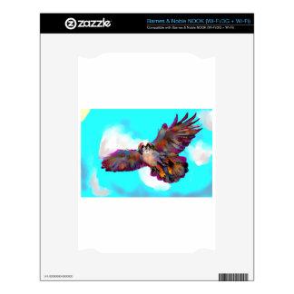 eagle soar pic _equalized.jpg decals for NOOK
