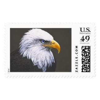 Eagle Stamps