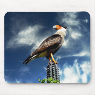 Eagle standing on a cactus mouse pad