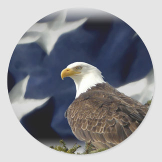 Eagle Star Classic Round Sticker