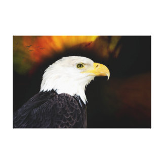 Eagle Stretched Canvas Print
