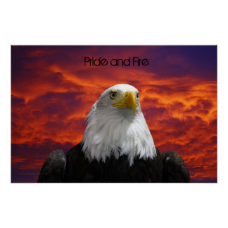 eagle sunset, Pride and Fire Poster