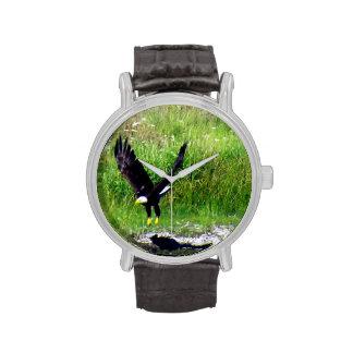 Eagle Swooping Reloj