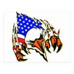 Eagle Tearout W/ American Flag Tattoo Post Cards