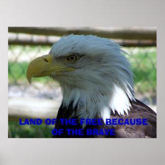 Eagle, TIERRA del LIBRE DEBIDO Al VALIENTE Posters
