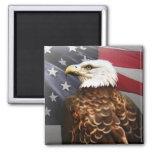 Eagle-USA Fridge Magnet