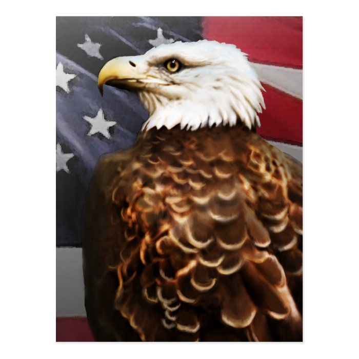Eagle-USA Postcard